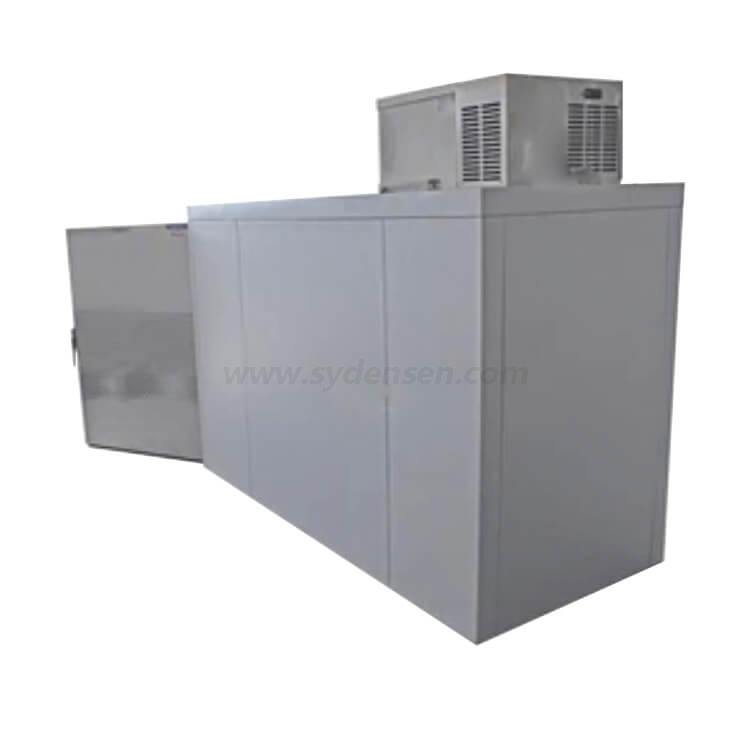 Densen Customized Oversized 2 Body Cot Roll-In Mortuary Cooler