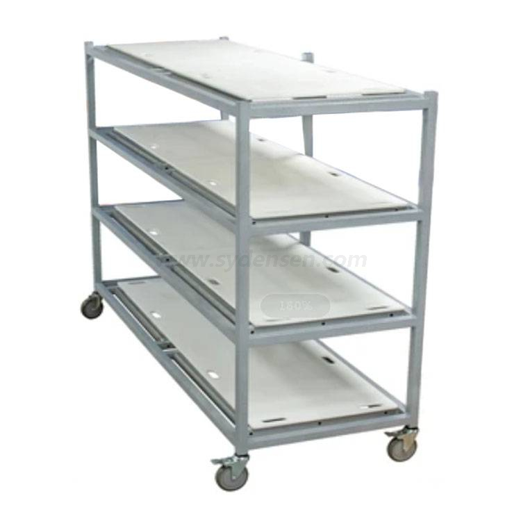Densen Customized Loading Mortuary Rack Model